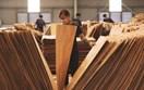Hoa Kỳ gia hạn thời gian ban hành kết luận điều tra chống lẩn tránh thuế đối với SP gỗ dán cứng