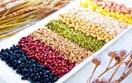 Thúc đẩy mở cửa thị trường Úc cho sản phẩm nông thủy sản của Việt Nam