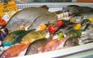 Bộ NN&PTNT: 3 nhóm giải pháp để EU bỏ thẻ vàng đối với thủy sản VN