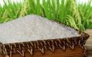 Gạo Việt nâng chất, tăng giá trị
