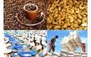 Triển vọng thúc đẩy hợp tác thương mại nông sản Việt Nam - EU