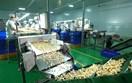 Thời cơ mới cho xuất khẩu hạt điều từ Hiệp định EVFTA