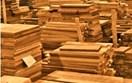 Nghị định của Chính phủ quy định Hệ thống bảo đảm gỗ hợp pháp Việt Nam.