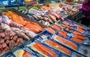 Nâng cao chất lượng, hiệu quả, sức cạnh tranh của sản phẩm thủy sản Việt Nam