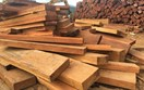 Công ty Algeria có nhu cầu mua gỗ dán của Việt Nam