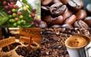 Ngày 10/12 được chọn là Ngày Cà phê Việt Nam