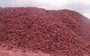 Giá quặng sắt tại Trung Quốc giảm phiên thứ 5 liên tiếp