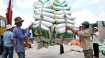 Giá lúa gạo thế giới sẽ còn tiếp tục biến động mạnh