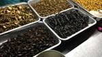 """Bổ sung """"thực phẩm côn trùng"""" vào danh mục các loại thực phẩm mới"""