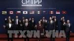 CPTPP: Nhiều lĩnh vực của Mexico lo yếu thế trước Việt Nam