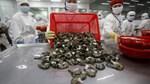 Doanh nghiệp Việt phải đánh đổi những năm đầu để hưởng lợi từ EVFTA