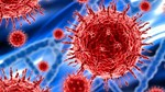 Cập nhật thông tin về virus corona ngày 15/2