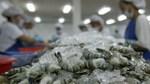 Australia ra điều kiện mới về nhập khẩu tôm