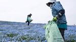 Ngành công nghiệp hoa toàn cầu tơi tả vì Covid-19