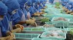 Doanh nghiệp chế biến thực phẩm phục hồi tích cực