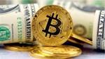 Bitcoin lao dốc mạnh nhất năm nay, xuống thấp nhất 3,5 tháng