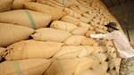 USDA dự báo thương mại gạo thế giới năm 2021 và 2022 (báo cáo tháng 9/2021)