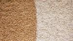 Mỹ có thể tăng xuất khẩu gạo trong năm 2018 - 2019 nếu giá giảm