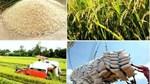 Tin vui cho DN XK: Nhiều dấu hiệu nhập khẩu gạo thế giới năm 2018 sẽ sôi động