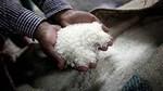 Xuất khẩu gạo Ấn Độ sẽ tiếp tục phá kỷ lục do nhu cầu từ Bangladesh
