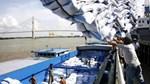 Philippines gia hạn hạn chế nhập khẩu gạo thêm 3 năm