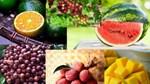 Thông tin về một số loại trái cây trên thị trường Mỹ và Trung Quốc