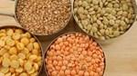 Giá nông sản và kim loại thế giới ngày 31/3/2020