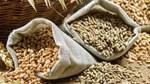 Giá nông sản và kim loại thế giới ngày 25/2/2020
