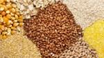 Báo cáo của USDA về thương mại ngũ cốc thế giới