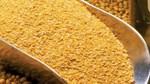 Khô dầu đậu tương dùng làm thức ăn chăn nuôi có thuế NK 0%