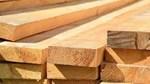 Giá gỗ vừa trải qua tuần giảm mạnh nhất trong lịch sử
