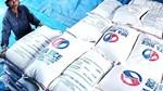 Tuần 5-9/10: Giá gạo xuất khẩu tăng mạnh