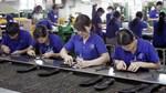 ADB: Doanh nghiệp vừa và nhỏ tại Việt Nam cần nhiều nguồn vốn hơn để cạnh tranh