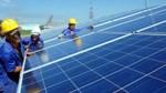 Xu hướng toàn cầu về giá điện mặt trời và giới thiệu cơ chế đấu giá