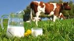 Sắp diễn ra Triển lãm đầu tiên về Sữa tại Việt Nam