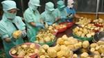 Việt Nam là TT bù đắp sự thiếu hụt hàng hóa cho Singapore giữa đại dịch COVID-19