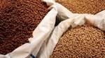 Kim ngạch xuất khẩu thức ăn chăn nuôi của Việt Nam năm 2020 tăng khá