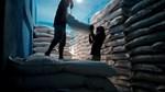 Bang sản xuất đường lớn nhất Ấn Độ tăng giá mua lần đầu tiên trong bốn năm
