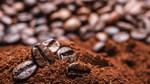 Thị trường đường, cà phê, ca cao thế giới ngày 24/11/2017