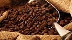 Giá cà phê trong nước ngày 22/8/2017