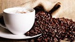 Giá cà phê trong nước ngày 17/10/2017