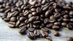 Thị trường cà phê, ca cao ngày 24/5/2017