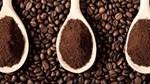 Giá cà phê ngày 24/9 đi ngang so với phiên cuối tuần