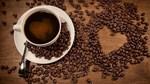 TT cà phê ngày 21/11: Ảm đạm với giá liên tiếp sụt giảm