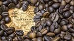 TT cà phê ngày 22/01: Giảm nhẹ 100 đồng/kg