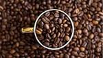 TT cà phê tuần 33: Giá tăng nhẹ do nguồn cung sụt giảm từ các nhà sản xuất
