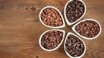 TT cà phê ngày 23/9: Giá trong nước tuột dốc theo đà giảm của giá thế giới