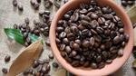 TT cà phê ngày 16/4: Giá giảm nhẹ tại các vùng nguyên liệu trọng điểm