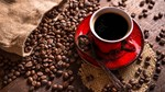 ICO điều chỉnh giảm dự báo dư cung cà phê toàn cầu niên vụ 2021/22