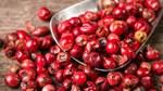 TT hạt tiêu ngày 03/4: Giá giảm 500 đồng/kg tại nhiều vùng nguyên liệu trọng điểm